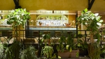 alcazar-restaurant-le-bar-du-balcon-13176[1].jpg